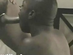 Interracial Bareback vidz Fun