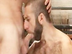 3 beard vidz men with  super horny cocks