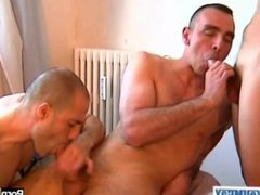 2 french vidz sports guys  super with huge cock get sucking our assistant...
