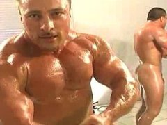 hot muscle vidz stud./