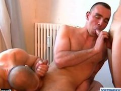 Guys: just vidz suck our  super assistant and shut up! (hunk serviced in spite of them!