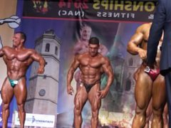 MUSCLEBULLS WITH vidz HOT POSERS