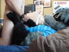 rough raccoon vidz play