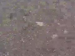 MAN FROG vidz GETS A  super HUMPING