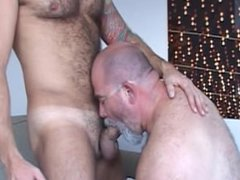 Daddy Bear vidz and his  super muscle Cub