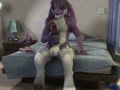Furry Bunny vidz Jerk Off