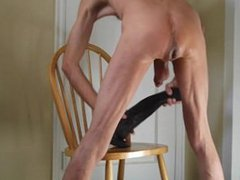 Anal Horse vidz Cock and  super Fucking a Huge Stallion Penis Dildo