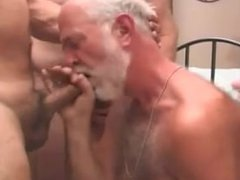 Daddy Bears vidz Fuck In  super Action