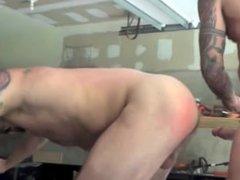 Sexy White vidz Daddy -  super Rocco Steele Breeds (BB)