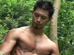 Japanese Boxer vidz - Ken  super Watari
