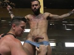 Mr. Ducati's vidz New Fuck  super Toy is Chained up and Ruthlessly Flogged