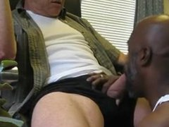 Black daddy vidz sucking a  super fat white cock