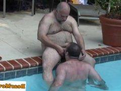 Polar bear vidz dicksucked in  super the pool