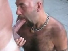 public blowjob vidz exhibitionists on  super busy streets