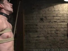 Hunk Flogged vidz And Fucked