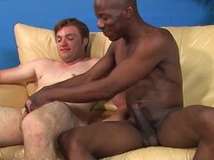 White guy vidz and a  super black guy suck off each other