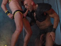 Harness gay vidz sucks bigcock