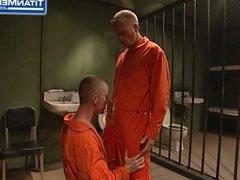GAY GROUP vidz FUCK IN  super PRISON
