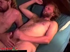 Mature straight vidz bears enjoy  super sucking cock