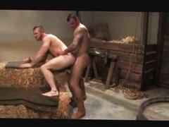 Fun in vidz the barn