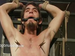 Suspended and vidz balanced on  super their knees