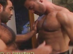 muscular hot vidz bears video