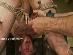 Three gay vidz boys tied  super asked to perform