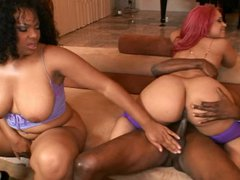 2 black vidz chicks share  super a big black cock