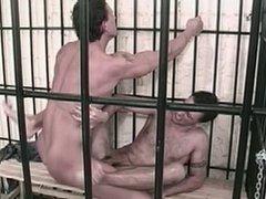 Studs in vidz jail hump  super asshole