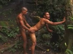 SWARTHY GAYS vidz FUCK IN  super A JUNGLE.
