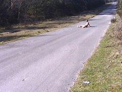 Public Nudity vidz On Road