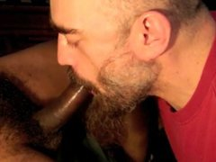 Bearded Cock vidz Sucker