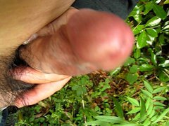 my outdoor vidz climax ejaculation-03