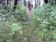 Nude in vidz Public -  super Very long walk through the woods