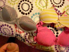 Step daughters vidz bras
