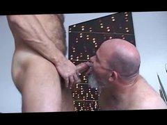 Bald Hairy vidz Daddy Bear(s)