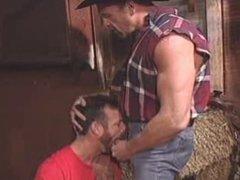 Cowboys in vidz the Barn