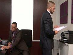 homo office vidz scene 3