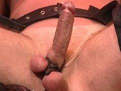 Eyefolded gay vidz slave gets  super humiliate and balls punished