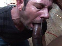 Black Cock vidz Nut