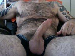 hot hairy vidz bear spunk