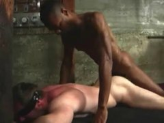 2 Big vidz Black Cocks  super Breed Tight White Ass