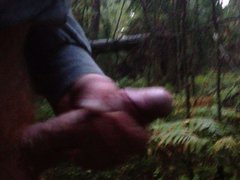 In the vidz woods 3