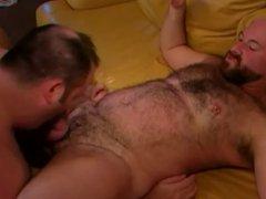 chub bears vidz on sofa