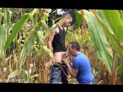 Cornfield Blowjob vidz For Exhibitionist  super Lad