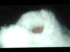 Fingering in vidz fur