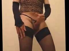 Jerking my vidz cock dressed  super in fake leapard skin lingerie