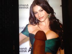 Sofia Vergara vidz Tribute