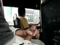 BigCockFlasher - vidz Bus Show