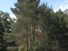 Auf der vidz Waldwiese und  super im Heu